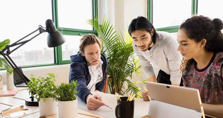 Kontorlandskap med planter