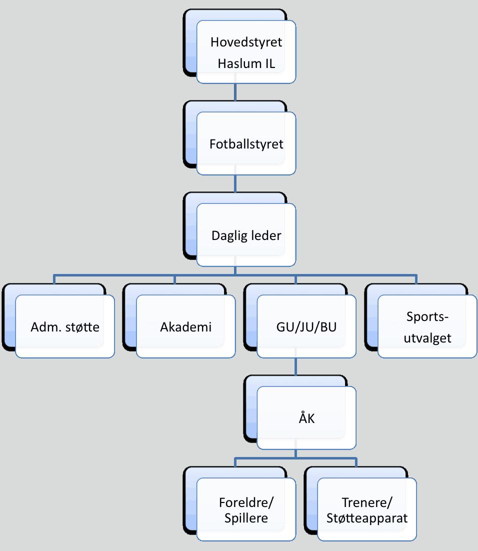 Høy organisasjon