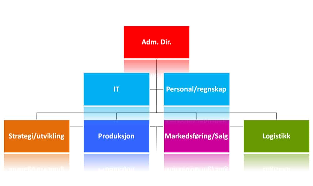 Flat organisasjon